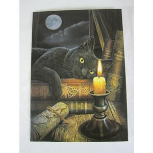 Book of Shadows Greetings Card