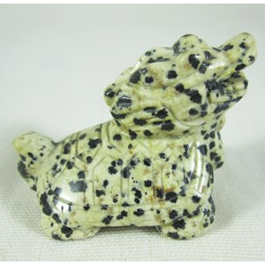 Dalmatian Jasper Dragon Turtle
