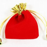 Scarlet and Gold Velvet Pouch
