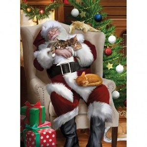 Cat Nap Santa Christmas Card