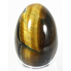 Tigers Eye Egg