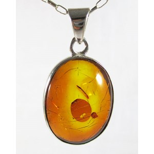 Amber Oval Pendant Smallish