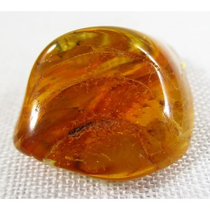 Piece of Raw Amber (Small)